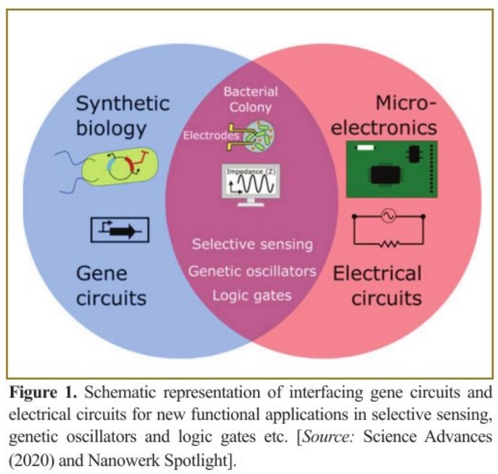 Bridging the Technology Gap between Micro-electronics and Synthetic Biological World