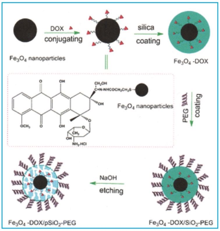 Thin Film Technology: Magnetic Nanoparticles: In Vivo Biomedical Applications by Dr. Peter Martin